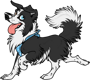 border_collie_by_spirit_of_alaska-d5uyfrp